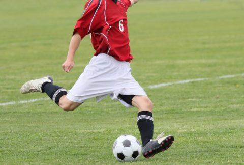 高校サッカー選手権